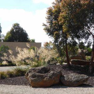 Back Lake garden, Victoria