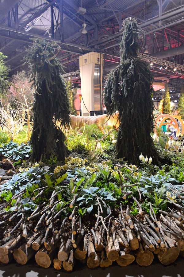 Carefully chosen human-form conifers for 'A Maleficent View' Design Leon Kluge. Best in Show Landscape