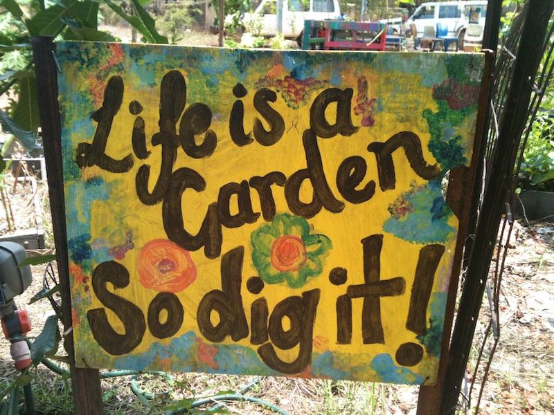 Shepherdson College garden SPIRIT and artwork