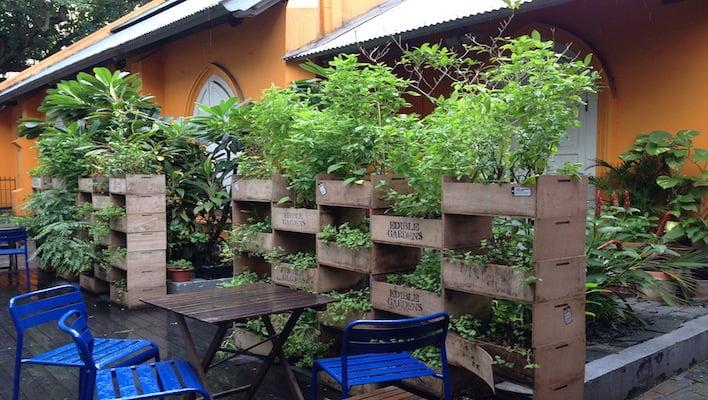 artichoke courtyard