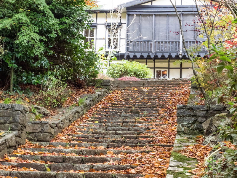 Mawarra: Autumn leaves and steps to the Tudor style house: Photo Anne Vale