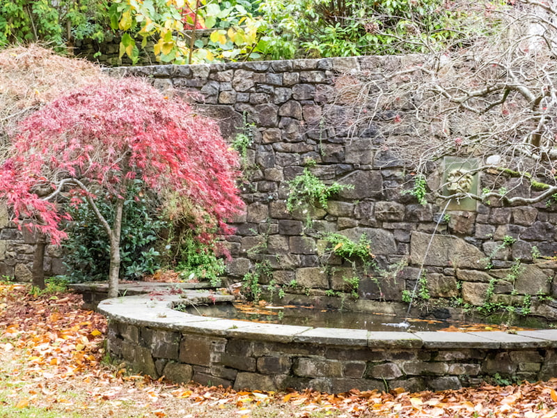 Pond and lawn sheltered by the symmetrical curved stairways: Photo Anne Vale