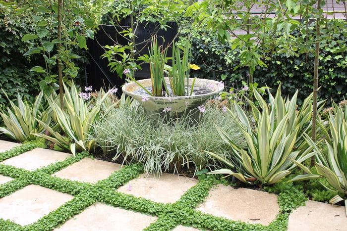 Annie's Garden, Edgecliff NSW. Photo OGA