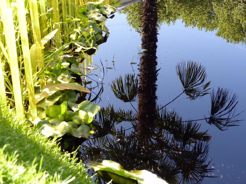 Chelsea Flower Show 2015 Fresh garden 'World Vision Garden: Grow Hope'. Design John Warland