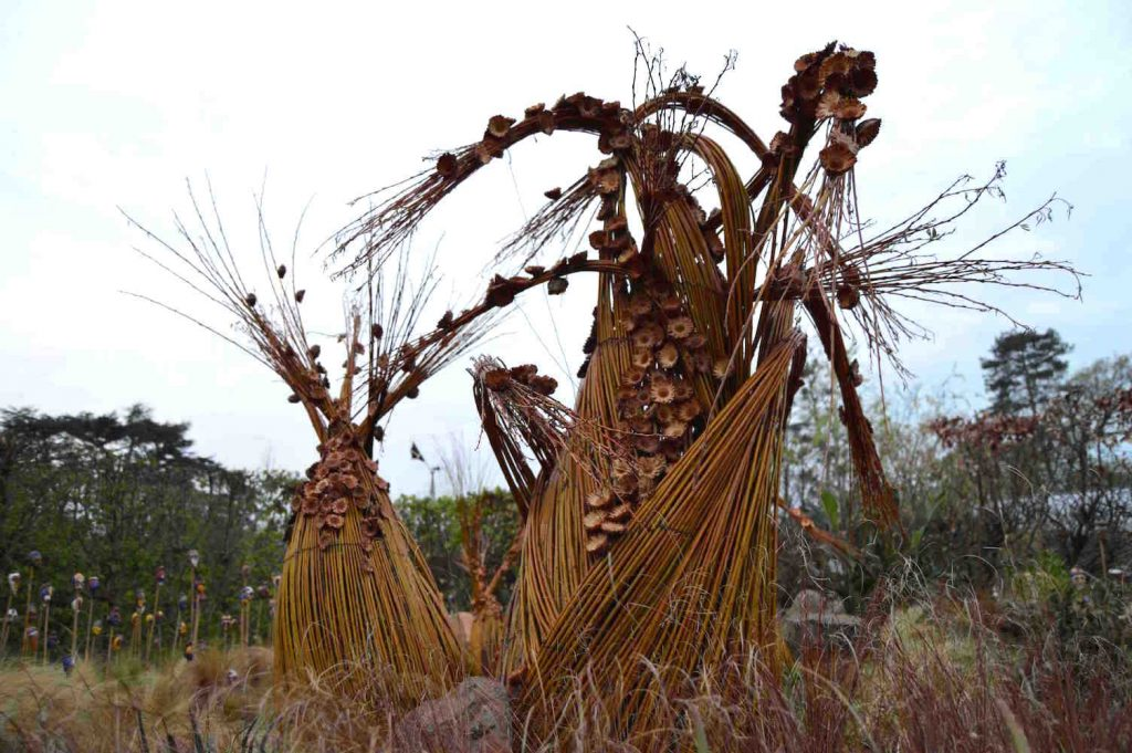 Adenium sculptures and dry grasses in Cuisine Africaine, design Leon Kluge. Chateau Chaumont 2015 13