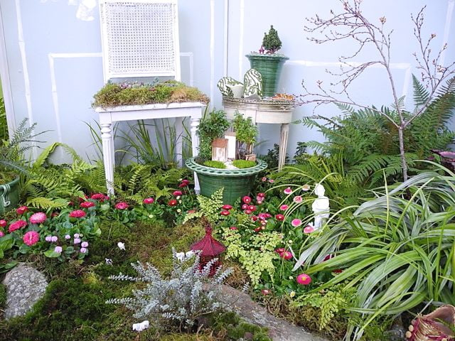 Miniature garden by Two Green Thumbs