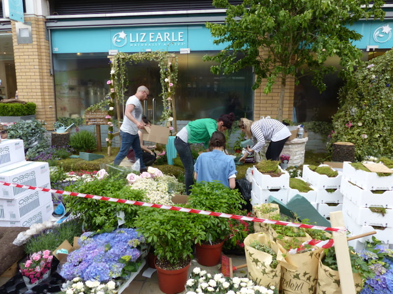 Putting together Liz Earle floral exhibit in Sloane Square, London