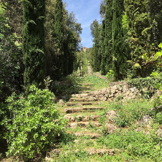 Views in: relaxed steps, Villa Cetinale