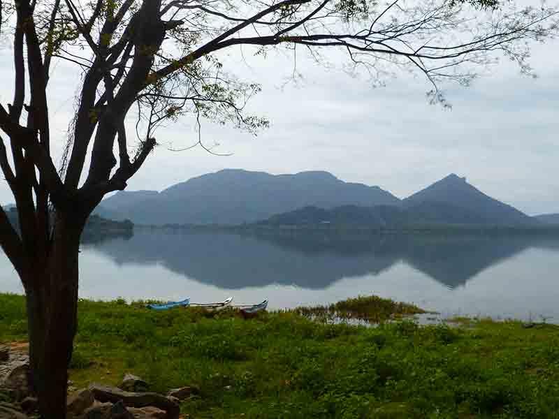 Sea of Parakrama, near Sigiriya. Photo Fiona Ogilvie