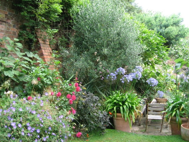 Add pots to your garden ©Stephanie Donaldson