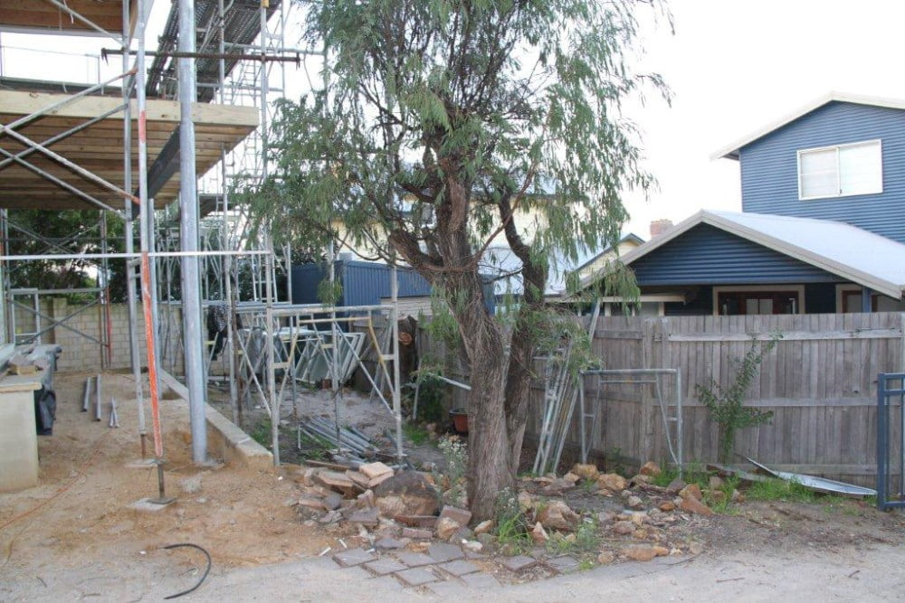 Before - view from the driveway showing the existing Agonis tree to be retained