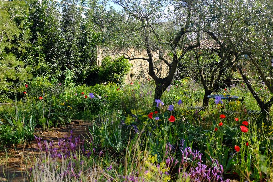 Chelsea Flower Show 2015 'Perfumers Garden in Grasse' Design Scape Design. Gold medal