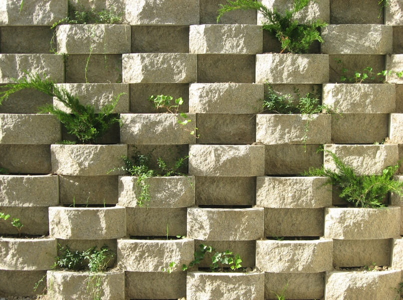 Patterned brickwork provides hollows for soil and softening plants to randomly climb and spill.