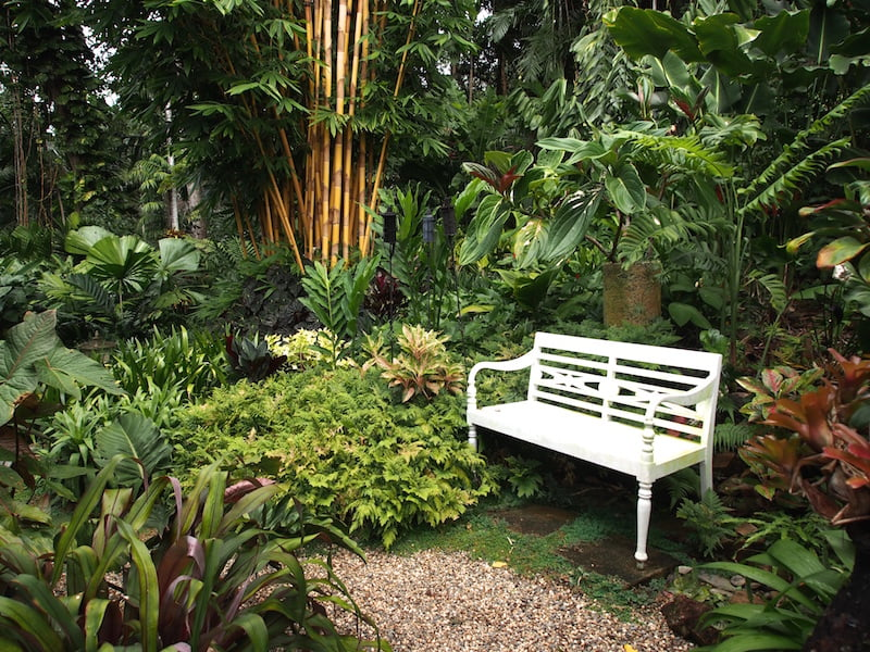 A perfect place to sit and enjoy the tropical garden. Tabu B&B Cairns