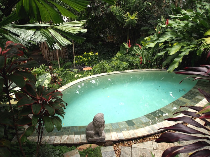 Cooling plunge pool in the tropical garden at Tabu B&B, Cairns
