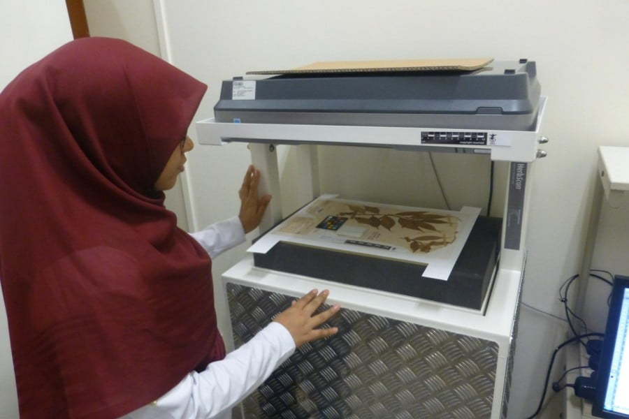 High-res. scanner digitising fragile type specimens so they can be handled and uploaded onto the internet, i.e. used without damaging the originals