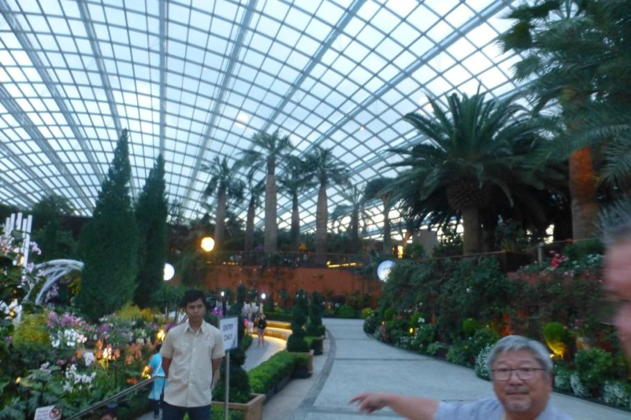 Dr. Tan on a whistle-stop tour of Gardens by the Bay – some 'retirement'!