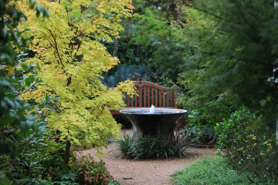 Bell pond – Ivanhoe garden by Robert Boyle, a feature of the ALC 2015 Garden Tour