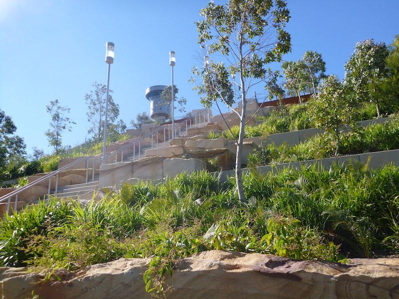 Barangaroo Point Park terracing