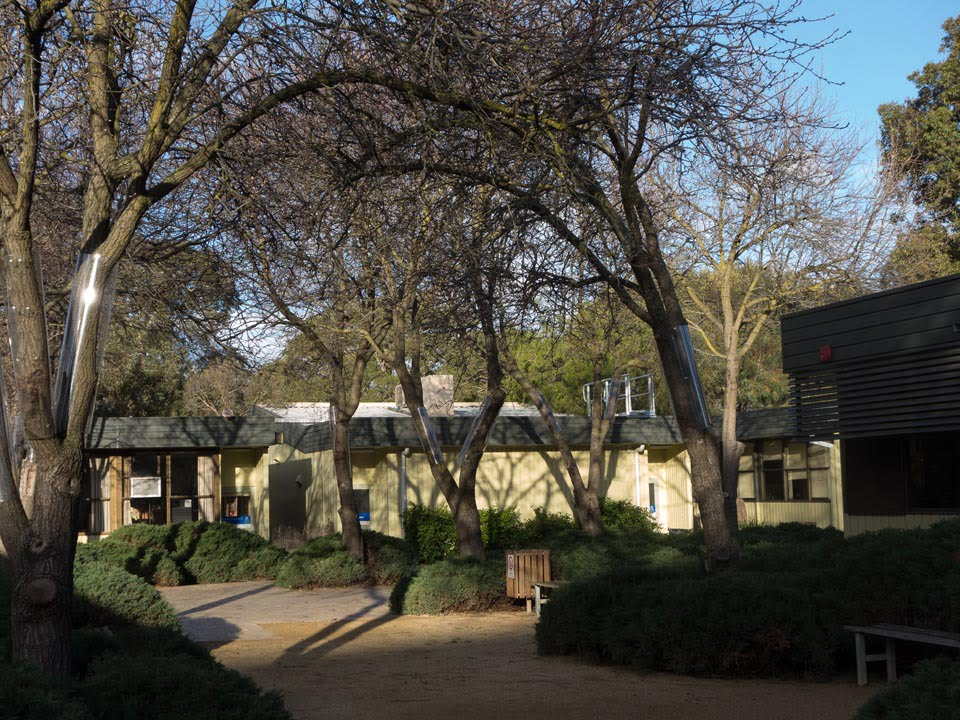 The Pear Tree Courtyard (Anne Vale)