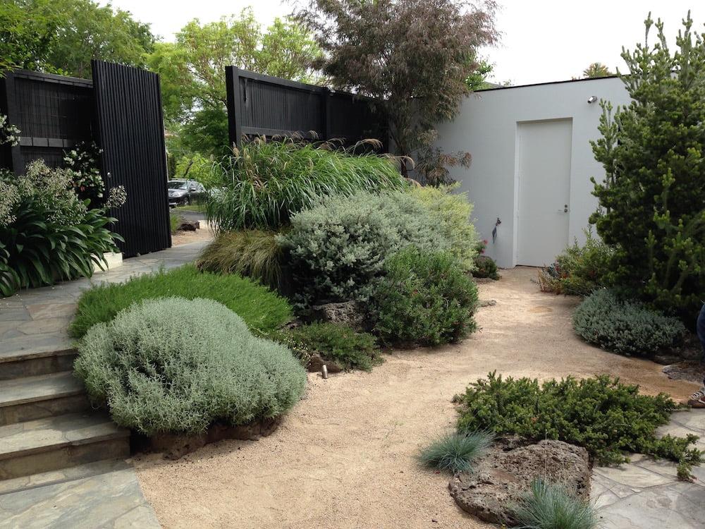 Cameron Paterson's Toorak garden. Photo Janna Schreier