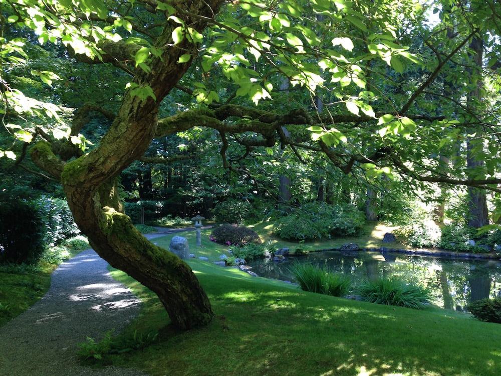 Nitobe Japanese Garden, Vancouver. Photo Janna Schreier