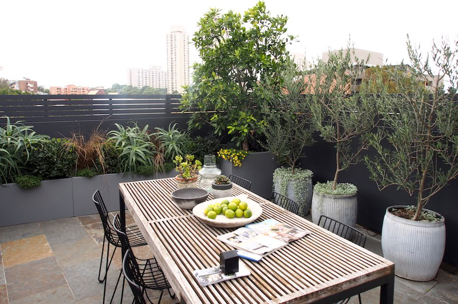 Roof garden designed by Adam Robinson