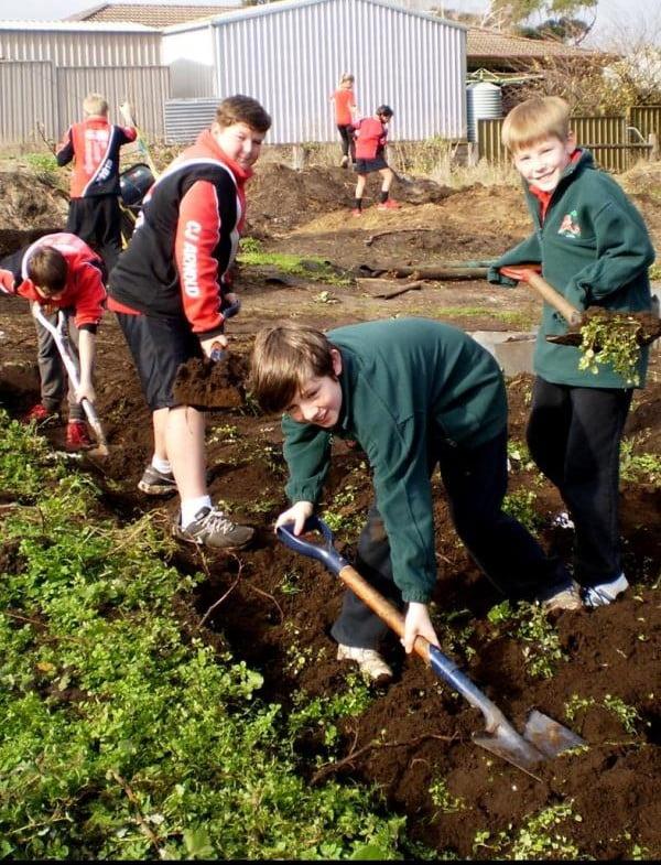 McDonald Park School gardening