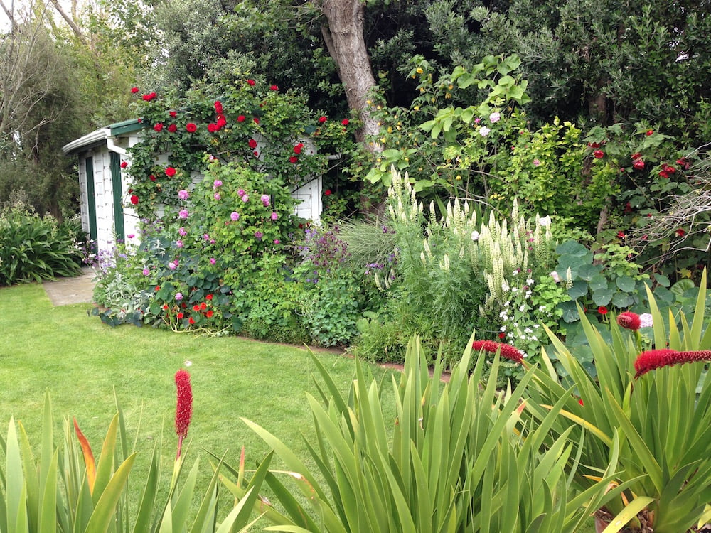 The Oakley Garden in New Zealand. One of so many well-loved garden that I have visited there. Photo: Janna Schreier