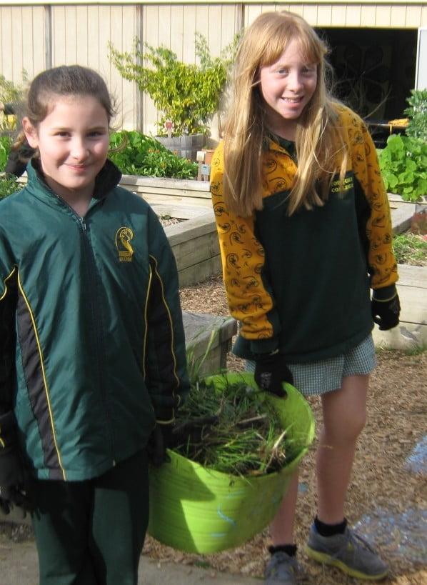 Torquay College weeding