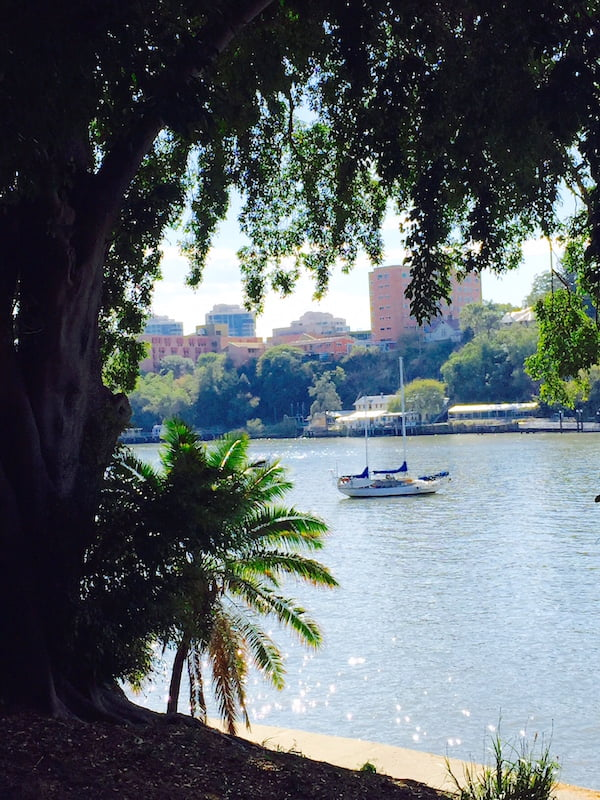 Brisbane River from Brisbane Botanic Gardens Photo Mary Jo Katter
