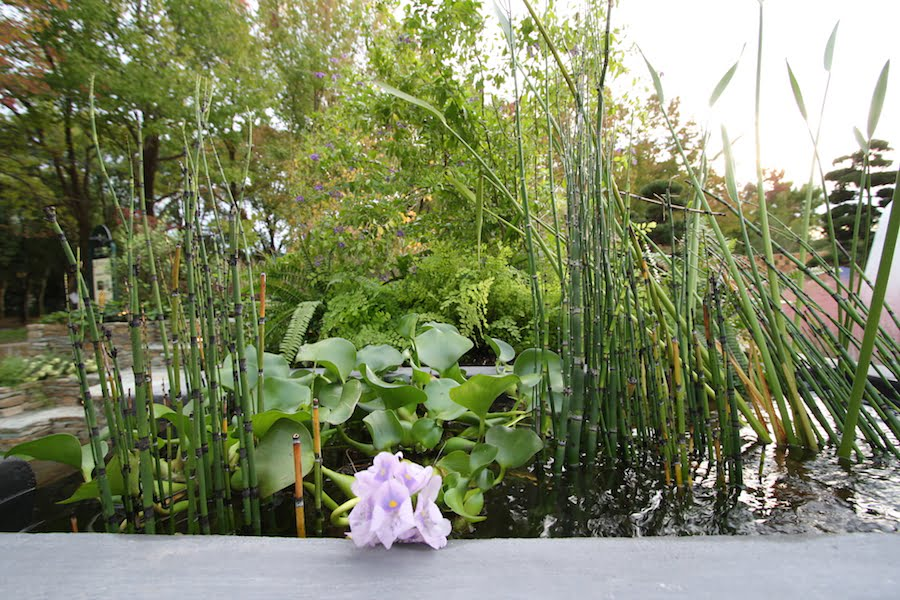 Design Alejandro O'Neill Uruguay entry in Japan World Flower and Garden Show 2015