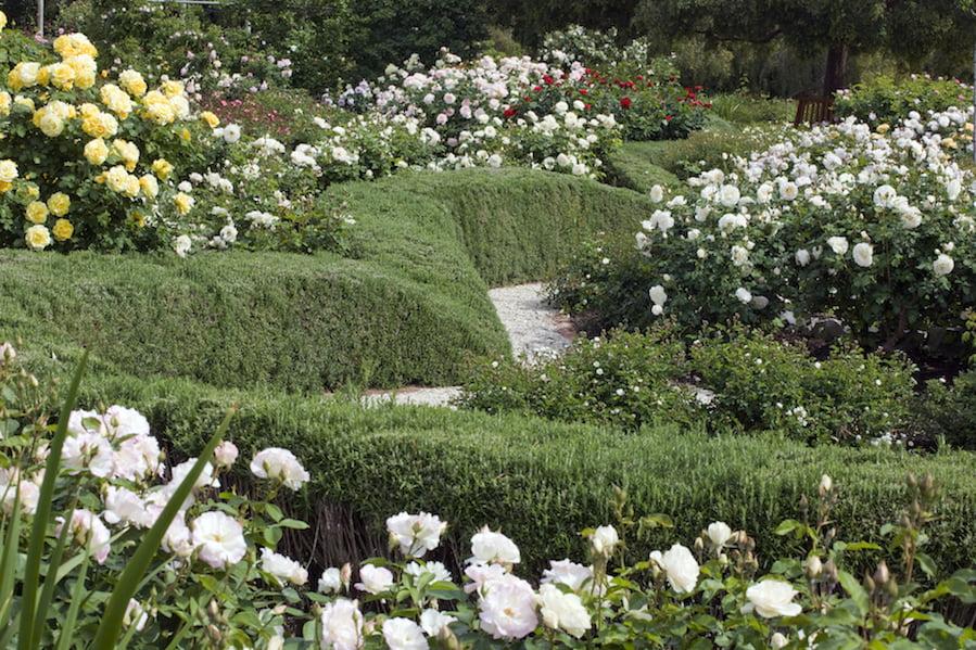 Waite Garden Design Viesturs Cielens