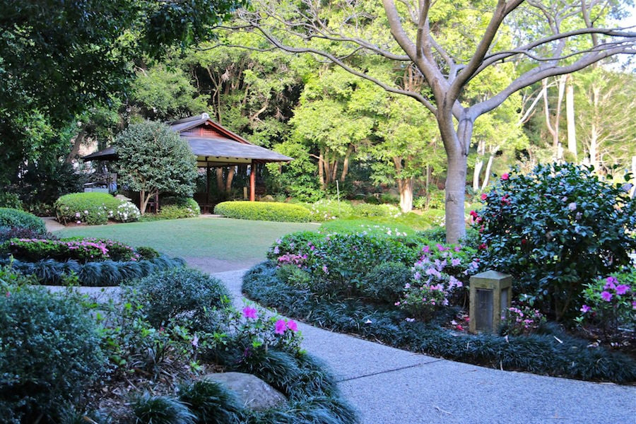 Mt Coot-tha Botanic Garden Japanese garden Photo Kim Woods-Rabbidge