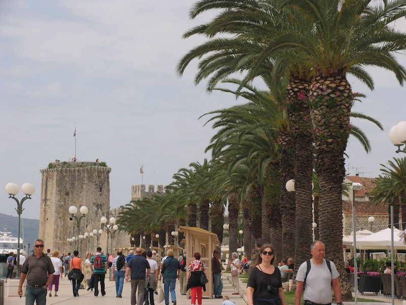 Palm-lined promenade in Trogir, Croatia