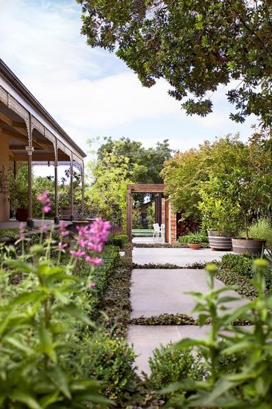 Transition space through the side garden. Design Ian Barker Gardens