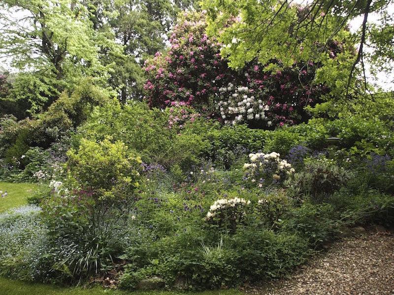 Hillandale Garden and Nursery Yeholme NSW