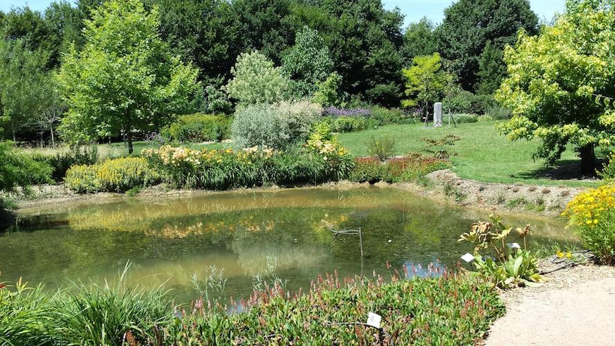 One of the restful view in Jardin du Bois du Puits