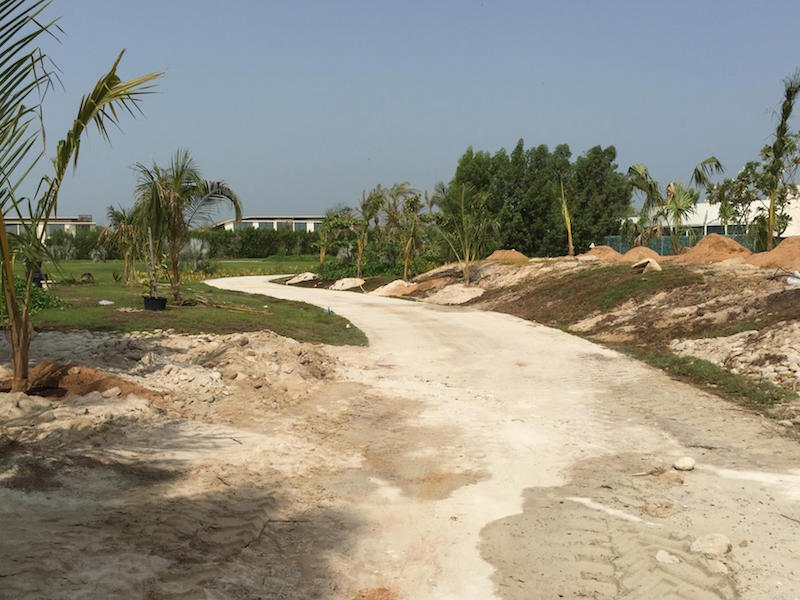 BEFORE: Pathway behind the Pool
