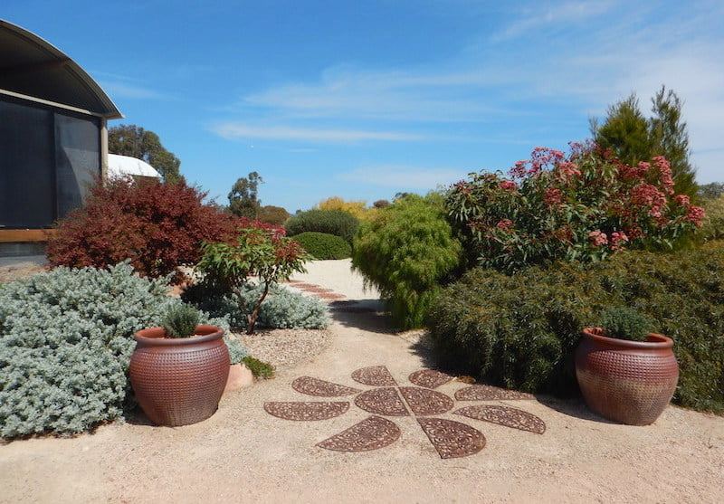 Splashes of red from Dodonaea and red flowering gum signals a welcoming entrance at Grannes