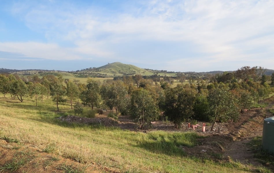 View to the new Southern Tablelands Ecosystem Park in the National Arboretum, Canberra ACT