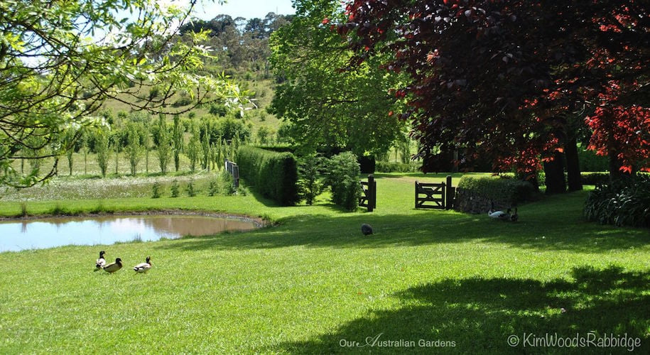 The garden at Brandon in 'Celebrate the Seasons' photo Kim Woods Rabbidge