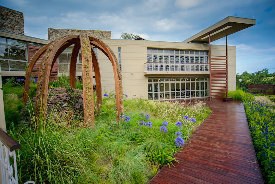 The timber arch sculpture planted with greenwall grasses Design Leon Kluge