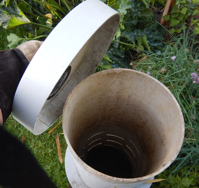 The tube down which you put all your kitchen scraps in the in ground worm farm