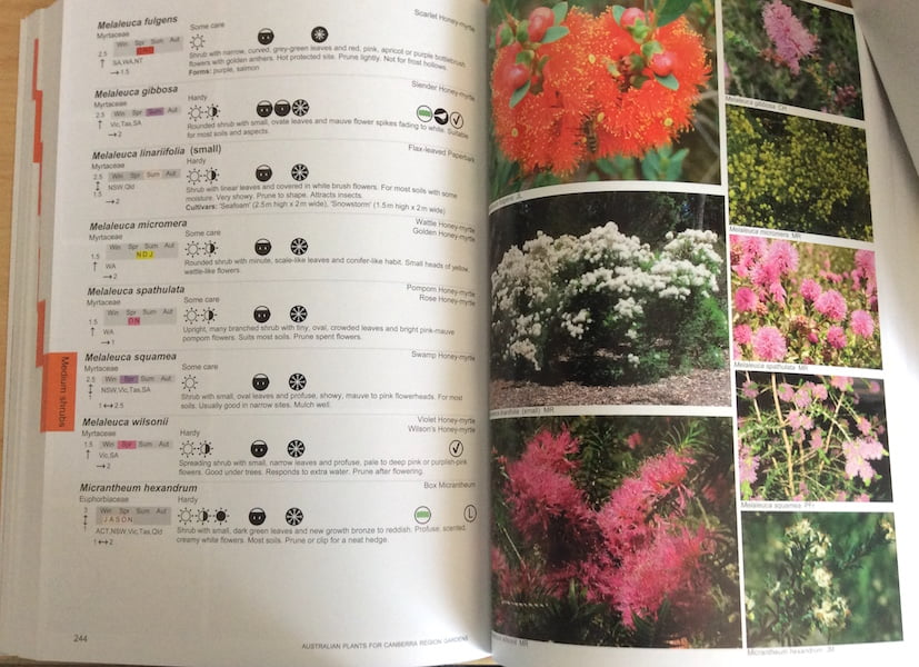 Inside: Australian Plants for Canberra Region Gardens