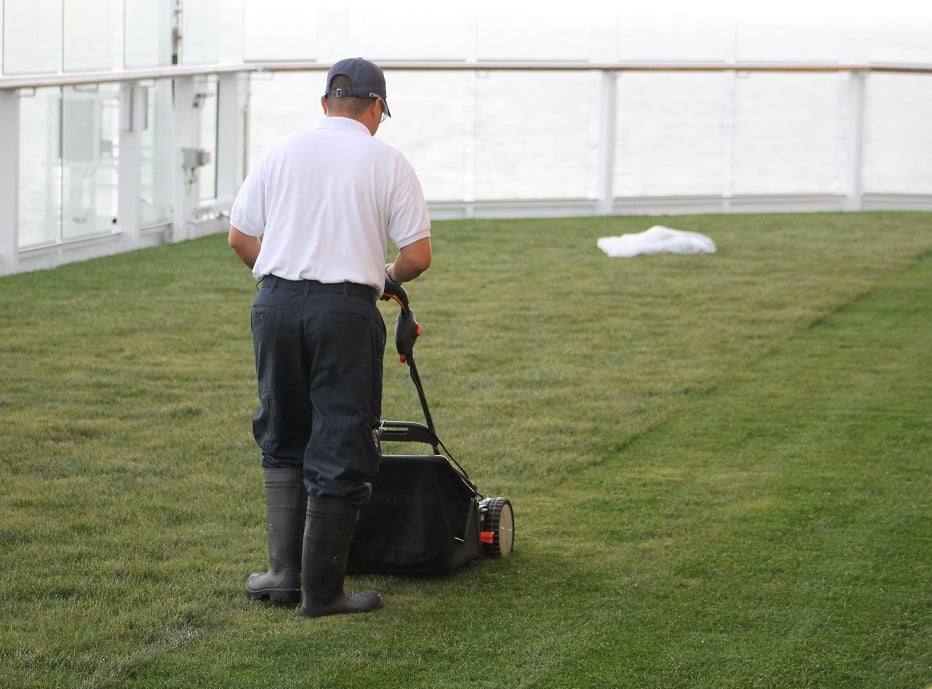 Lawn maintenance on the Celebrity Solstice Photo Mark Green V.I.P Lawns and Gardens, Mt Eden, NZ
