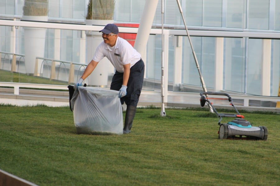 Lawn maintenance on the Celebrity Solstice. Photo Mark Green V.I.P Lawn Services Mt Eden