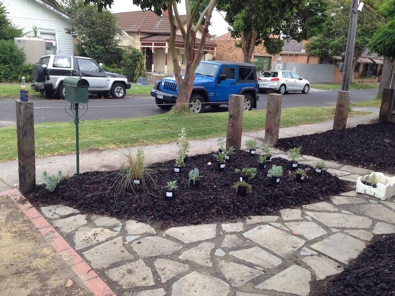 Planting Day 2