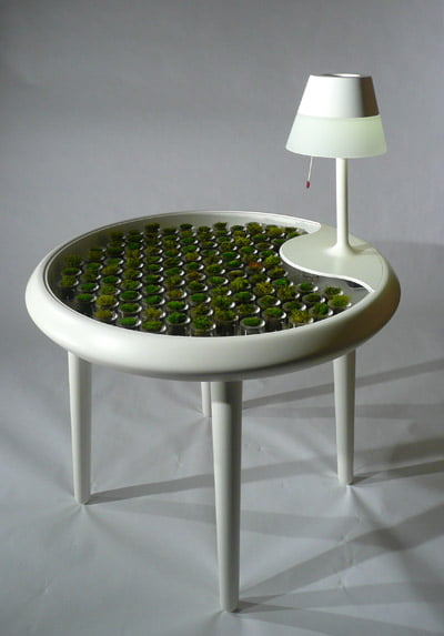 Moss table by Biophotovoltaics