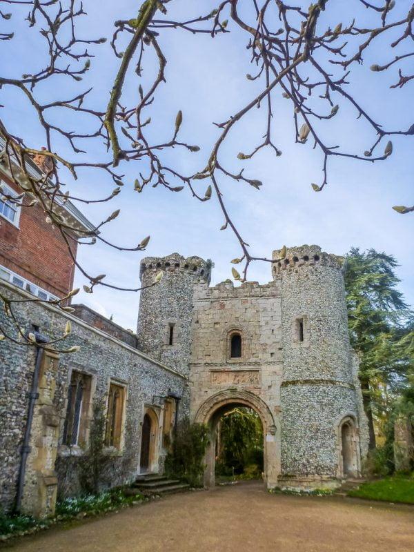 Castle and magnolia